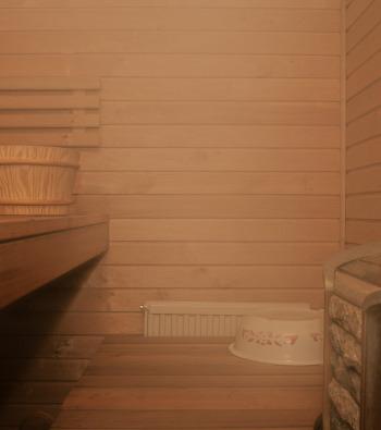 Sauna domowa koszt budowy