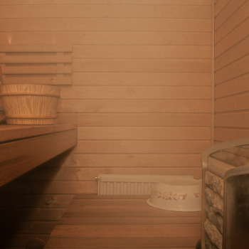 Sauna opalana drewnem